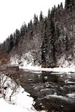 Winter mountain river in Carpathians Stock Photography