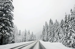 Winter mountain road Stock Image