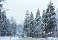 Winter mountain road. Stock Images