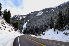 Winter Mountain Road. Winding mountain road leads through frosted evergreens Stock Images