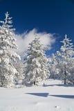 Winter Mountain Scene. Sunny winter day - winter mountain scene Stock Photography