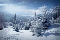 Winter Mountain Scenery Stock Photo