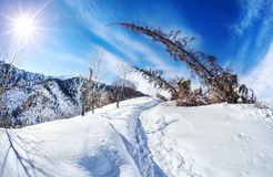 Winter mountain scenery Stock Photos