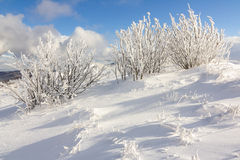 Winter mountain scenery in Bieszczady mountains Royalty Free Stock Images