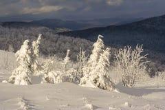 Winter mountain scenery in Bieszczady mountains Royalty Free Stock Photos