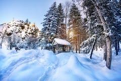Winter mountain scenery Stock Image