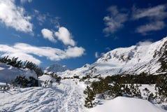 Winter mountain season landscape, Carpathians Royalty Free Stock Photo
