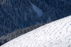Winter mountain slope and forest Royalty Free Stock Image