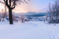 Winter mountain snowy hills. At sunrise stock images