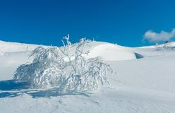 Winter mountain snowy landscape Stock Photography