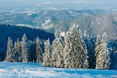 Winter mountain snowy landscape. Morning winter calm mountain landscape with beautiful frosting fir trees and ski track through snowdrifts on mountain slope Stock Photo