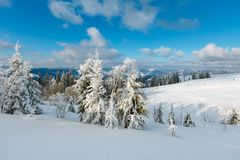 Winter mountain snowy landscape. Winter calm mountain landscape with beautiful frosting trees and snowdrifts on slope Carpathian Mountains, Ukraine. Skiers are Royalty Free Stock Photos