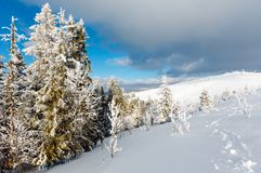 Winter mountain snowy landscape Royalty Free Stock Images