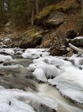 Winter mountain stream Royalty Free Stock Image