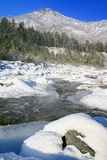 Winter mountain stream. Stock Photos