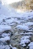 Winter mountain stream. Stock Photography