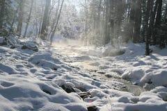 Winter mountain stream. Royalty Free Stock Photography