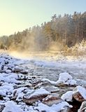 Winter mountain stream. Royalty Free Stock Images