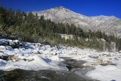 Winter mountain stream. Royalty Free Stock Image