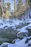 Winter mountain stream. Stock Image