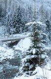 Winter mountain stream. Stock Photo