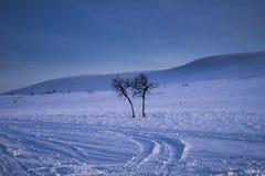 Winter Mountain. royalty free stock photo
