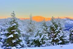 Winter mountain sunrise. Beautiful winter mountain sunrise view Stock Photography