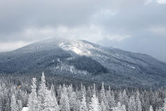 Winter mountain valley landscape Stock Images