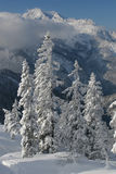 Winter mountain view. Mountain landscape with snowy trees Stock Photo