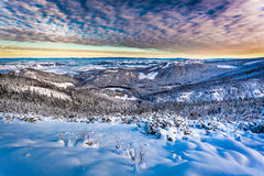 Winter mountain view from the ridge Royalty Free Stock Images