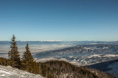 Winter mountain view. With snow,sun and tree Royalty Free Stock Image