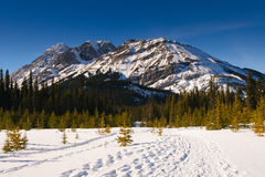 Winter Mountain Views Royalty Free Stock Images