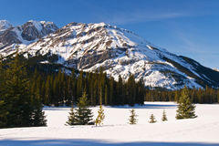 Winter Mountain Views Royalty Free Stock Image