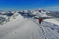 Winter mountainous landscape Royalty Free Stock Photo