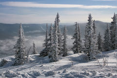 Winter in the mountains #001 Stock Image