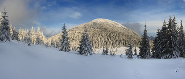 Winter in mountains. A frosty day is in mountains Royalty Free Stock Photos