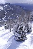 Winter mountains. Scenic winter mountain landscape at downhill ski resort in Canadian Rockies Stock Image