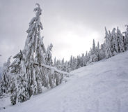 Winter in the mountains Royalty Free Stock Photography