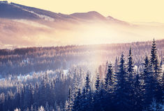 Winter mountains Royalty Free Stock Photography