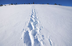 Winter mountains. On a bright sunny day with footmark in snow , Bulgaria Stock Photo