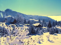 Winter in mountains Stock Image