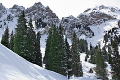 Winter in the mountains Royalty Free Stock Photos