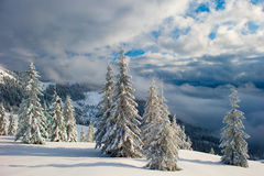 Winter mountains and fog Royalty Free Stock Photo