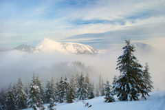 Winter mountains and fog Stock Images