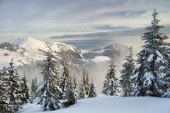 Winter mountains and fog Stock Image