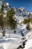 Winter in mountains. High Tatras, Slovakia Royalty Free Stock Photography