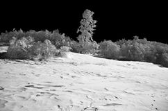 Winter infra-red photo. Winter in the mountains. IR Stock Images