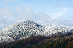 Winter mountains landscape Royalty Free Stock Image