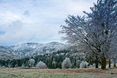 Winter mountains landscape Stock Image