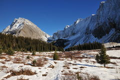 Winter mountains and meadows Stock Image